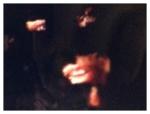 9/16/13 2:37 pm (Sandra), 2013